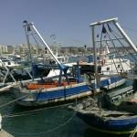 """Specialità Pesce ad Anzio """" Romolo al Porto """""""